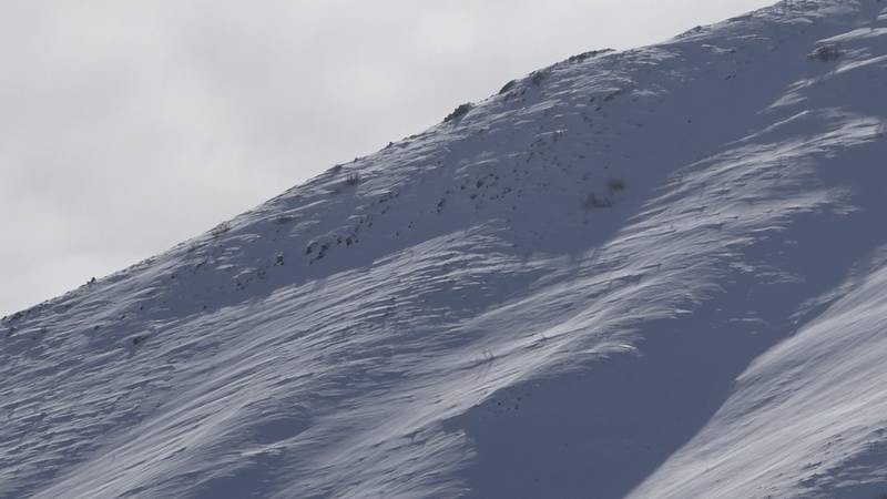 The name of a snowmobiler killed in an avalanche Saturday in Elko County has been released.