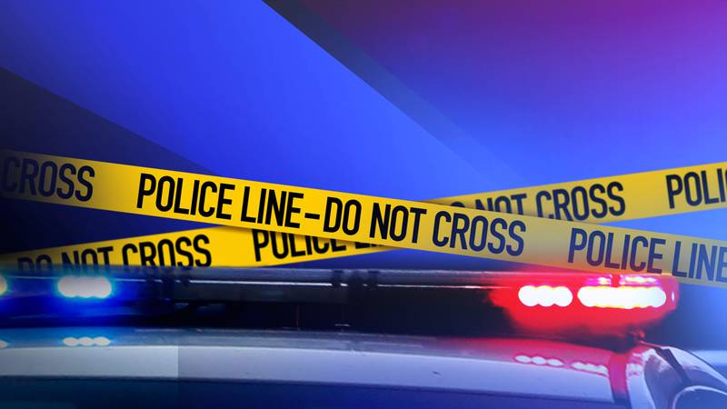 Boise Police and Idaho State police arrested 11 people as part of an operation designed to...