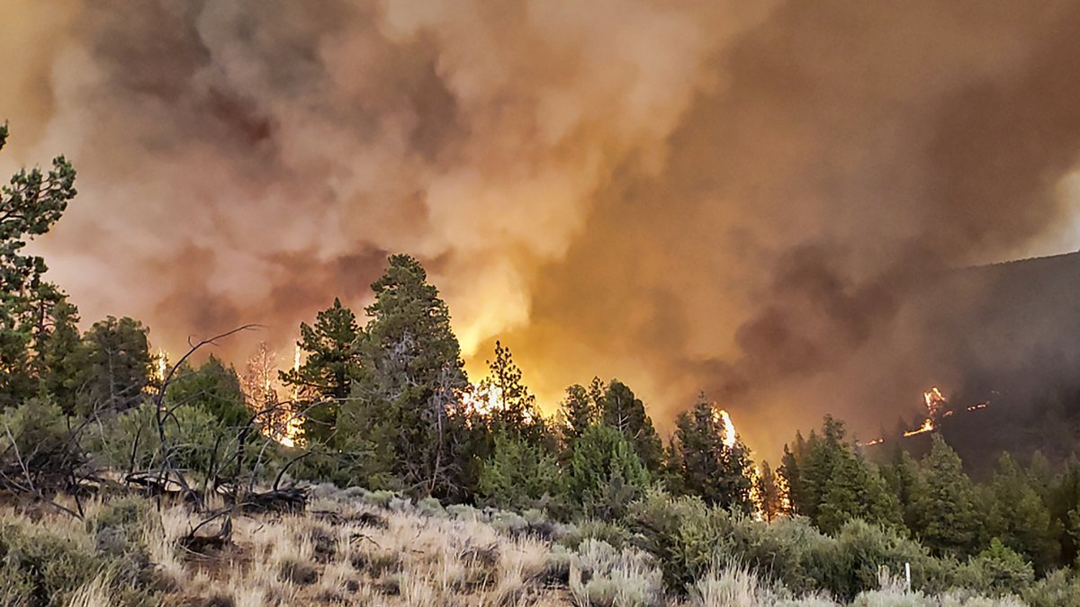 This photo provided by the Oregon Department of Forestry shows active fire along a ridge at the...