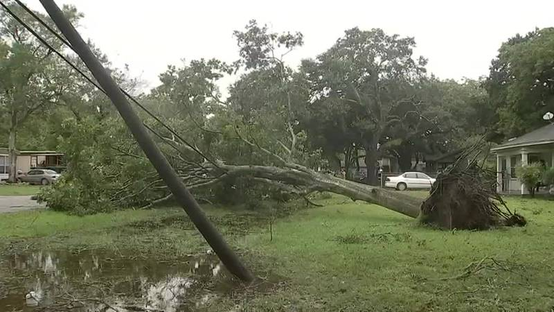 From powering our cities to doing severe damage to property, the wind is a part of our everyday...