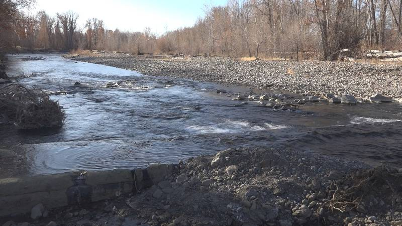 To make sure the overall fish population is healthy, Idaho Fish and Game will be conducting a...