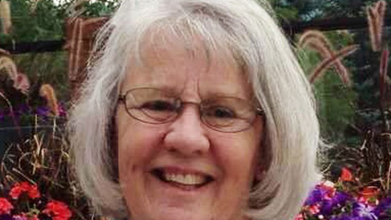 Dana Lee Neibaur Dorsey, a 71-year-old resident of Paul, passed away unexpectedly in...