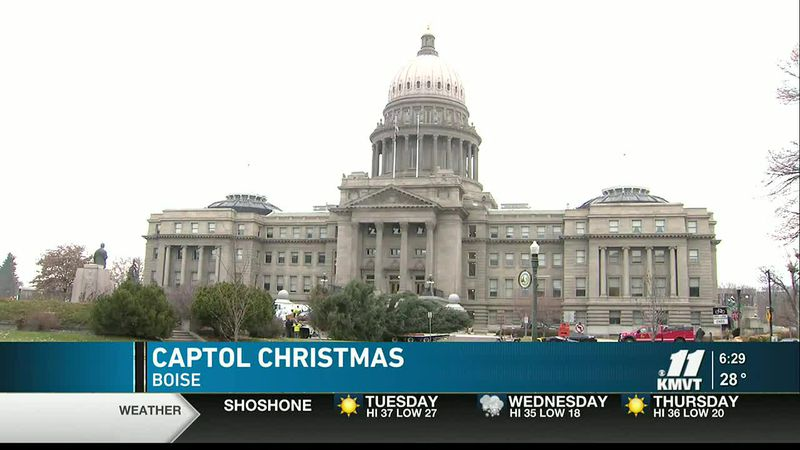 Annual Capitol Christmas Tree cut and placed at Idaho Statehouse