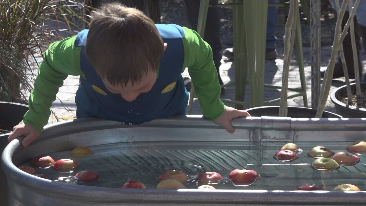 Webb Landscape hosted its annual fall festival Saturday at Twin Falls and Bellevue locations as a way to say thanks to the community. (Source: KMVT)
