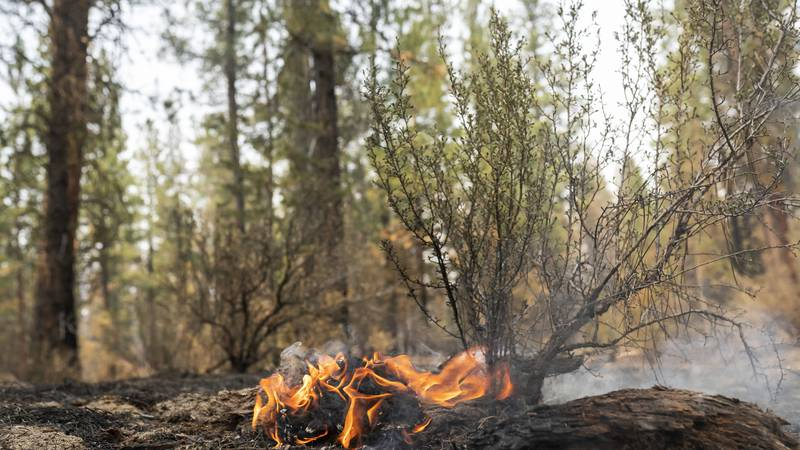 A hotspot flares up on the North East side of the Bootleg Fire, Wednesday, July 14, 2021, near...