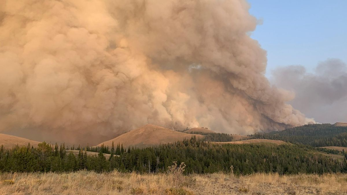 A smoke column coming off the Badger Fire burning in the South Hills of the Sawtooth National Forest in Cassia County. Image taken Sept. 14, 2020.