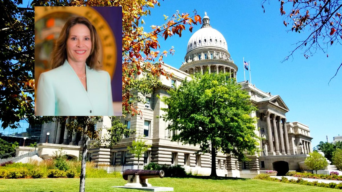 Lt. Gov. Janice McGeachin is running for governor.