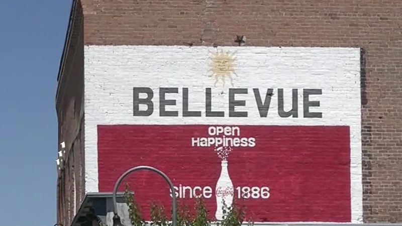 The Bellevue City Council unanimously passed a resolution Monday night to join a county-wide...