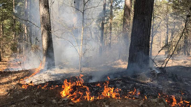 Wildfires in Idaho this year have been less than years past, but we aren't out of the woods yet.