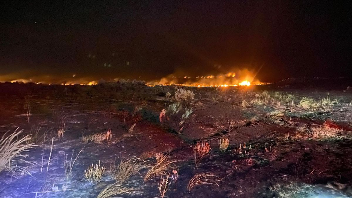 Idaho Gov. Brad Little says the state appears to have avoided a tough wildfire season with a combination of quick responses by firefighters and good luck with weather. Bureau of Land Management Twin Falls District stock photo of wildfire.
