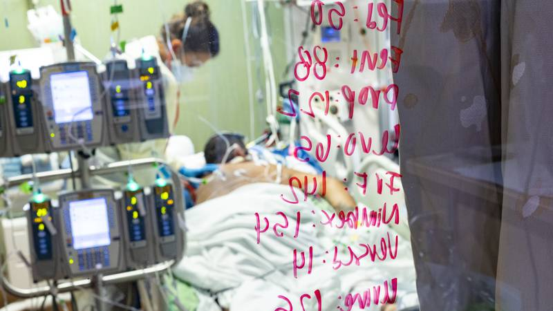 FILE - In this Aug. 31, 2021, file photo, Ann Enderle R.N. checks on a COVID-19 patient in the...