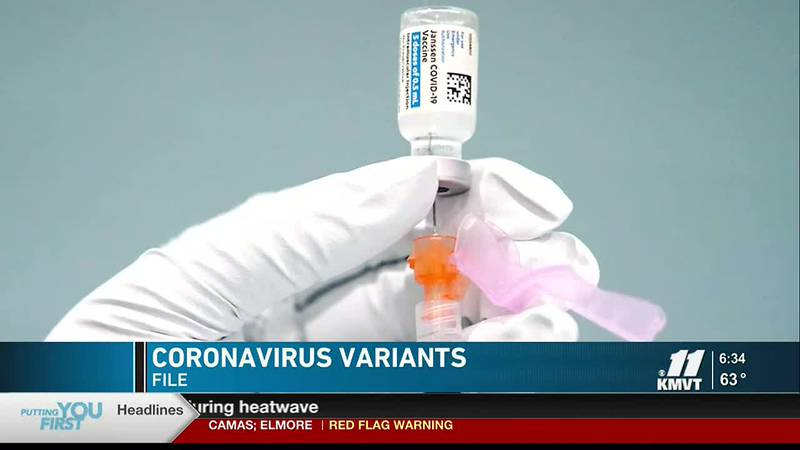 With less than half of Idaho's population 12 years and older vaccinated against COVID-19, the...