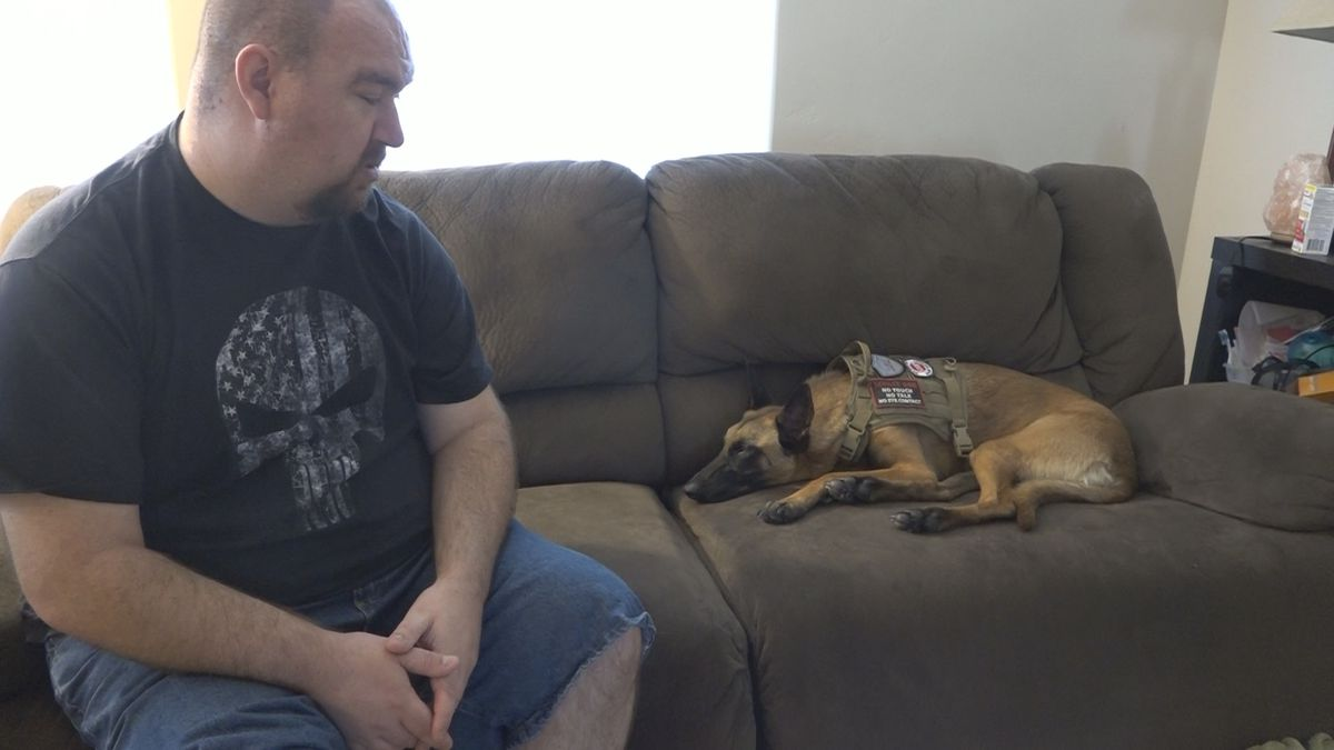 Former police offer and veteran Michael Thompson explains how his service dog Ziva helps him cope with PTSD.